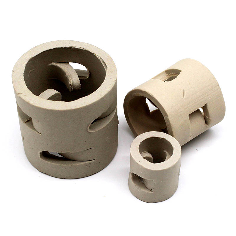 professional Ceramic Pall Ring on sale